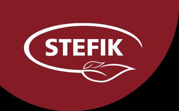 Logo Stefik